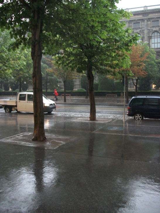 segway tour, Vienna, tourism, rain