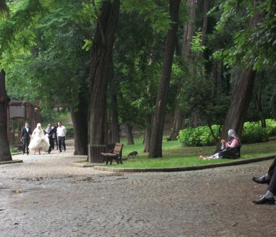 wedding, Gulhane park, Istanbul