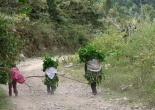 Peru, children, travels
