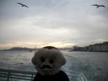 istanbul, bogaz tur, bosphorus cruise