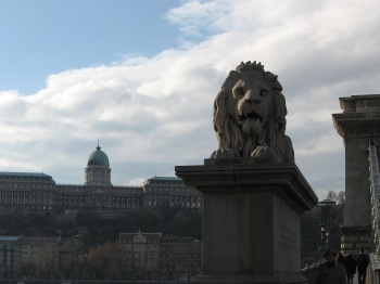 Budapest, Hungary, Lion, Chain Bridge