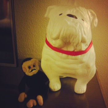 mooch the monkey, bulldog lamp